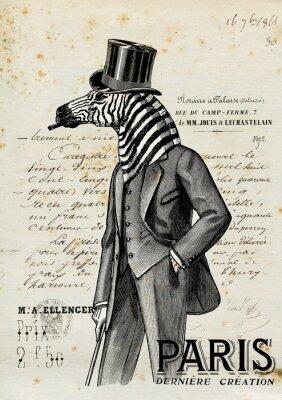 Posters Zebra homme