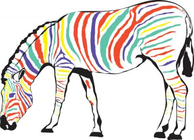 Posters Zebra Kolorowa