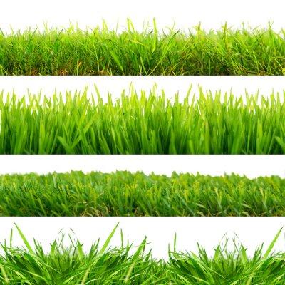 Sticker 4 prés herbe coupée