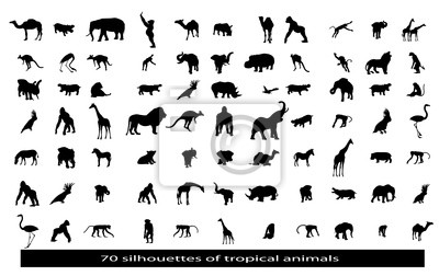 70 silhouettes des animaux africains