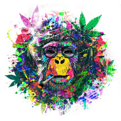 Sticker abstract colorful monkey background with funny face and cannabis