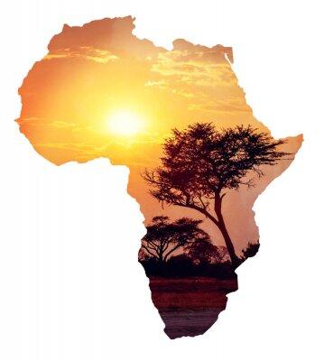 Sticker Africaine, coucher soleil, acacia, carte, afrique, concept