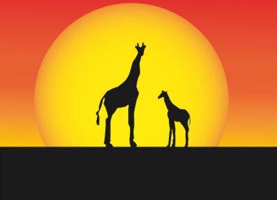 Sticker Africaine, girafes, silhouette, paysage