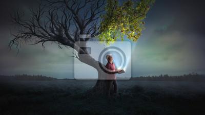 Sticker Amener la vie à un arbre