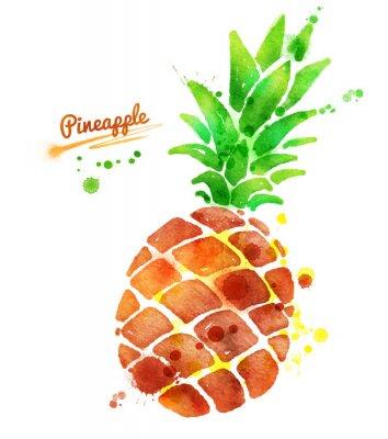 Sticker Ananas avec des éclaboussures de peinture.