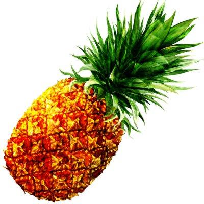 Sticker aquarelle ananas isolé