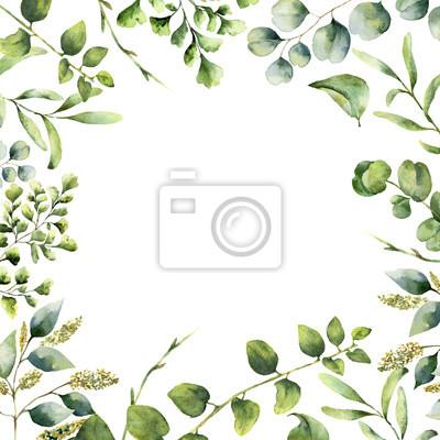 Sticker Aquarelle cadre floral. Main, peint, plante, carte, eucalyptus, fougère, ressort, verdure, branches, isolé, blanc, fond Imprimer pour la conception ou l'arrière-plan.