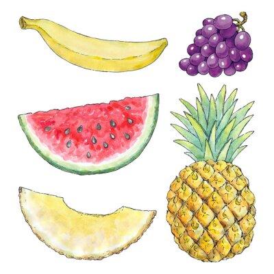 Sticker Aquarelle image de différents fruits