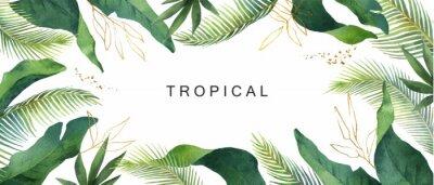 Sticker Aquarelle vecteur bannière tropical laisse isolé sur fond blanc.