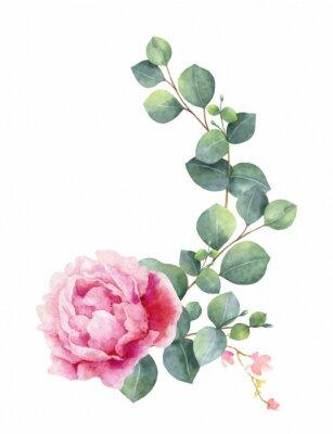 Sticker Aquarelle vecteur main peinture illustration de fleurs de pivoine et de feuilles vertes.