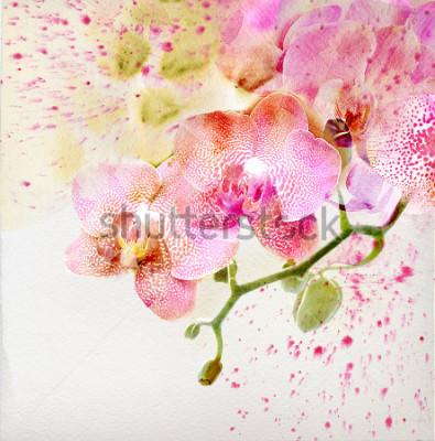 Sticker Aquarelles, fond floral