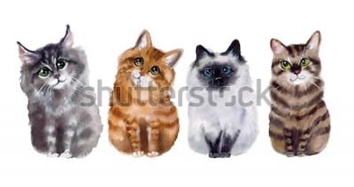 Sticker Aquarelles mignons chats drôles sur fond blanc
