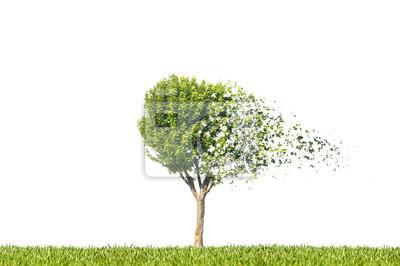 Sticker arbre automne dispersion de particule désintégration feuille
