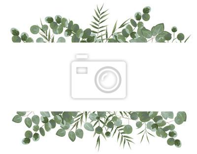 Sticker arrière-plan du texte d'eucalyptus. eucalyptus gris et vert.invitation, carte postale avec eucalyptus. style rustique, style botanique. rot avec des verts. illustration vectorielle