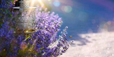 Sticker art d'été ou au printemps Beau jardin avec des fleurs de lavande