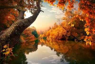 Automne orange sur le fleuve