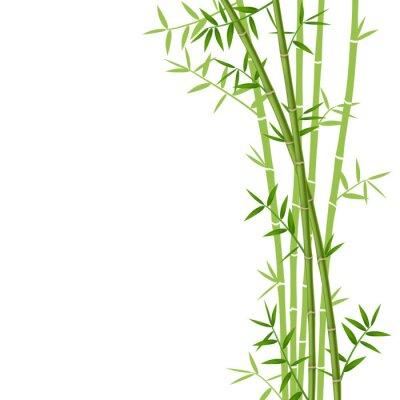 Sticker Bambou vert sur fond blanc, illustration vectorielle