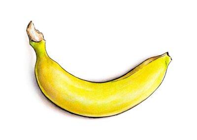 Sticker Banana isolé sur fond blanc. Illustration d'aquarelle. Fruits tropicaux
