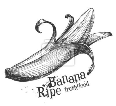 banane sur un fond blanc. croquis