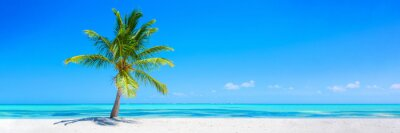 Sticker Banner of idyllic tropical beach with white sand, palm tree and turquoise blue ocean
