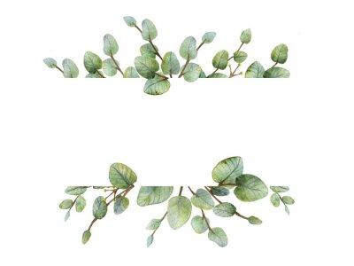 Sticker Bannière aquarelle verte eucalyptus sur fond blanc.