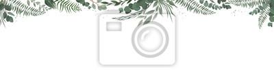 Sticker Bannière de conception vecteur botanique horizontal. Rose rose, eucalyptus, plantes succulentes, fleurs, verdure. Carte ou cadre printanier naturel.