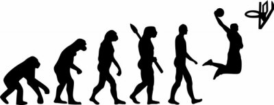 Basketball Evolution