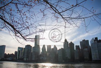 Bâtiments à Manhattan derrière des branches de fleurs de cerisier et de la rivière East