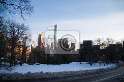 Bâtiments de Manhattan derrière Central Park en hiver