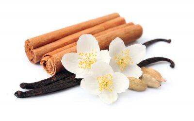 Sticker Bâtons de vanille