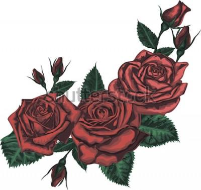 Sticker Beau bouquet de roses rouges. Art vectoriel réaliste - roses rouges sur fond blanc. - Élément de design pour carte de voeux