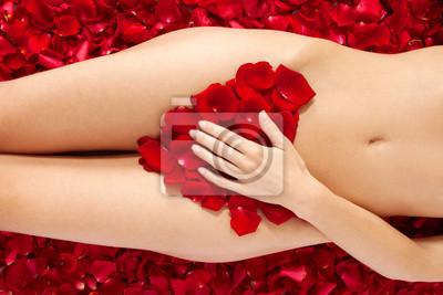 Beau corps de femme contre des pétales de roses rouges
