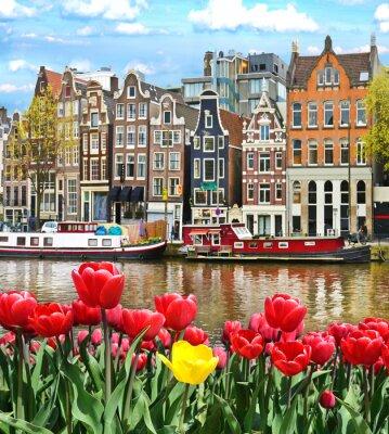 Sticker Beau paysage avec des tulipes et des maisons à Amsterdam, en Hollande