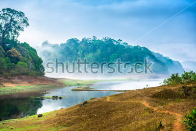 Sticker beautiful landscape with wild forest and river with fog in India. Periyar National Park, Kerala, India