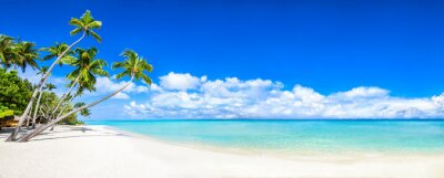 Sticker Beautiful tropical island with palm trees and beach panorama as background image