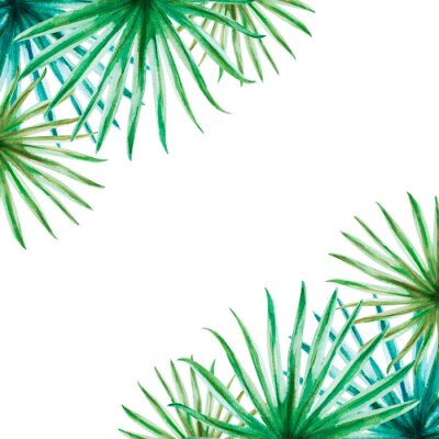 Sticker Beautiful tropical leaves frame. Palm. Watercolor painting. Exotic plant. Natural print. Sketch drawing. Botanical composition. Greeting card. Painted background. Hand drawn illustration.
