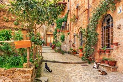 Sticker Belle allée dans la vieille ville Toscane