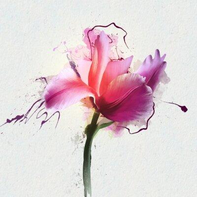 Sticker Belle tulipe brillante sur un fond blanc. Un genre de plantes bulbeuses herbacées pérennes de la famille Lily