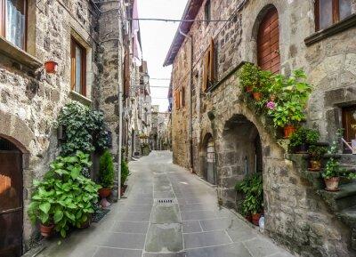 Sticker Belle vue sur les anciennes maisons traditionnelles et ruelle idyllique dans la ville historique de Vitorchiano, Viterbo, Latium, Italie