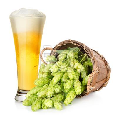 Bière et houblon dans le panier