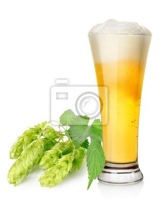 Bière légère et hop