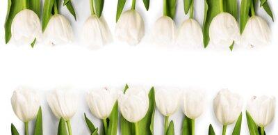 Sticker Blanc, tulipes, ombre