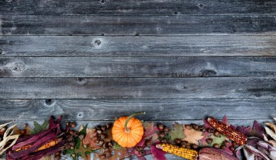 Sticker Bottom border real whole pumpkin, corn, acorns and foliage leaves on aged wooden planks for the Autumn holiday season of Halloween or Thanksgiving background