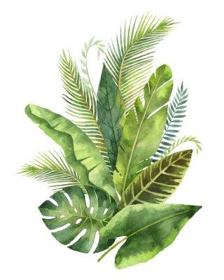 Sticker Bouquet d'aquarelle feuilles et branches tropicales isolées sur fond blanc.