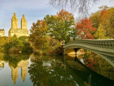 Bow bridge over lake at Central Park in autumn, New York