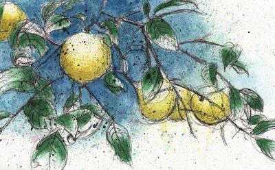 Sticker Branche d'arbre de citron