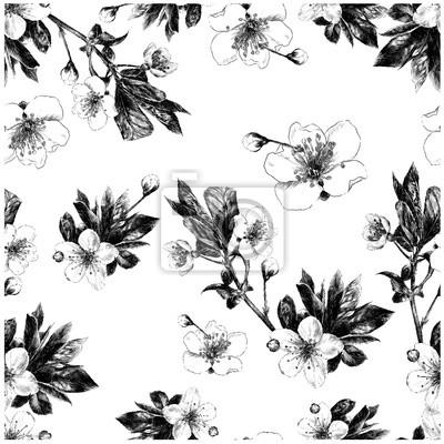 Branches De Fleurs Sans Couture Apple Dessin Noir Et Blanc