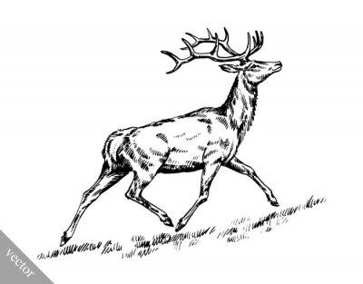 Sticker Brosse, peinture, encre, dessiner, vecteur, cerfs