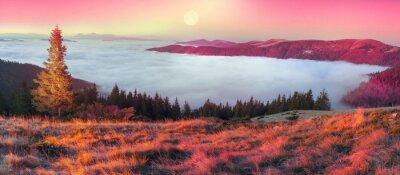 Sticker Brouillard en automne