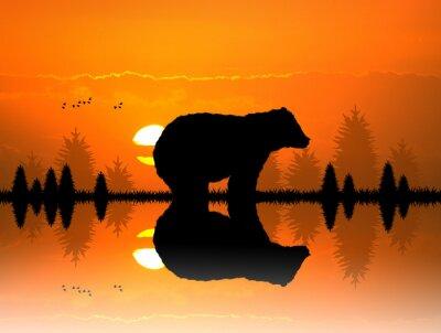 Sticker Brun dans la forêt au coucher du soleil